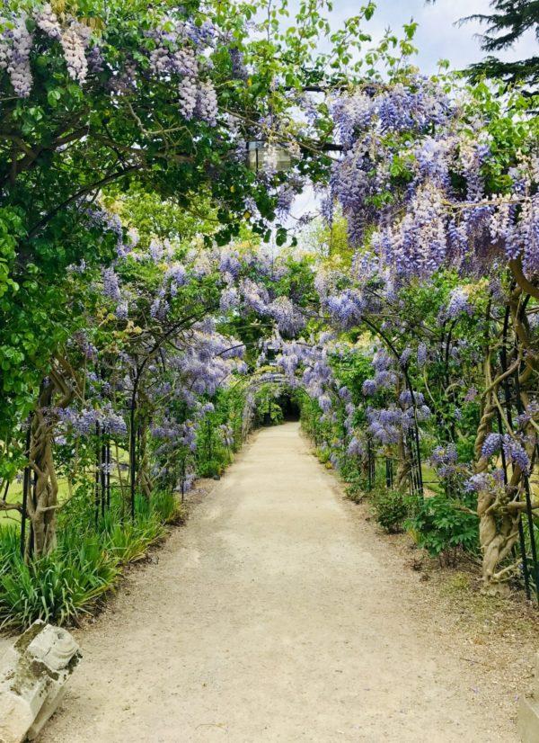 Garden flower tunnel